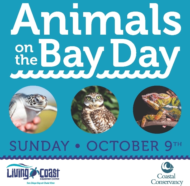 Animals on the Bay Day