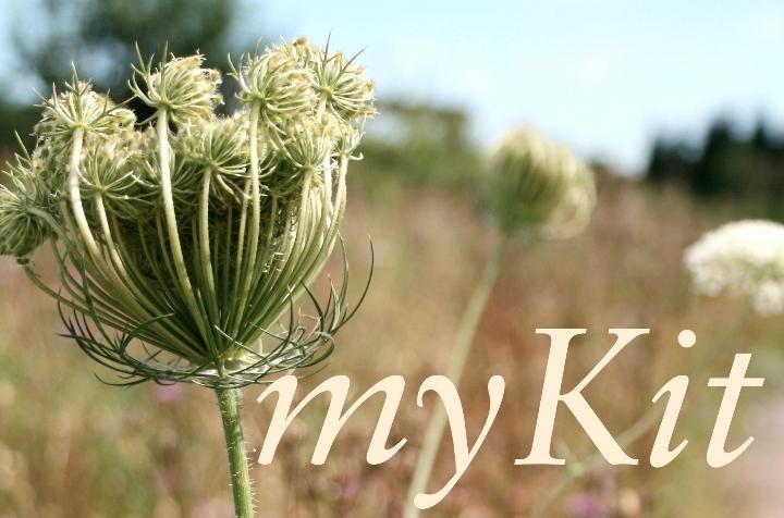 myKit.identity-Workshop
