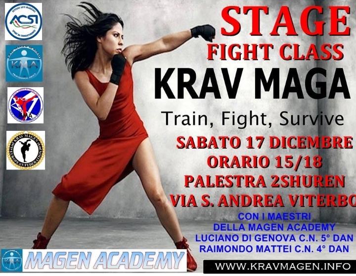 Stage di Krav Maga