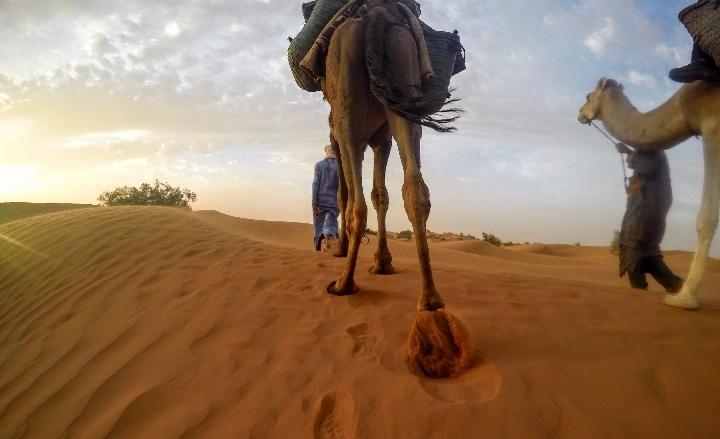 Sahara Desert Trekking Adventure