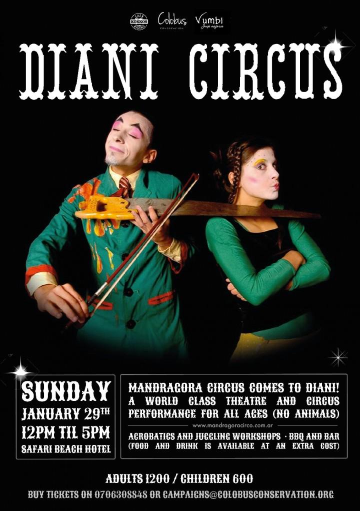 Circus in Diani