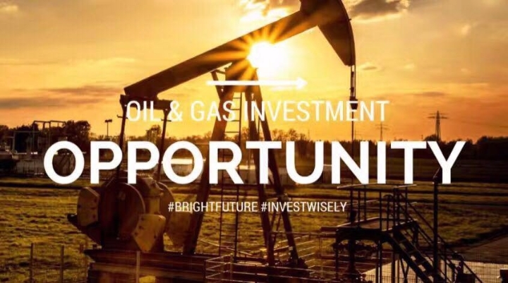 Why Oil Will Be The Best Investment in 2017