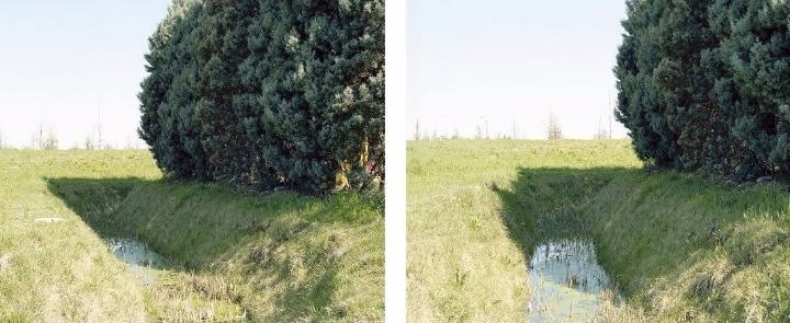 Mostra personale Mariano Andreani