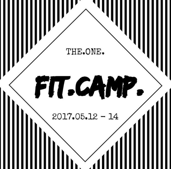 THE.ONE.FIT.CAMP.