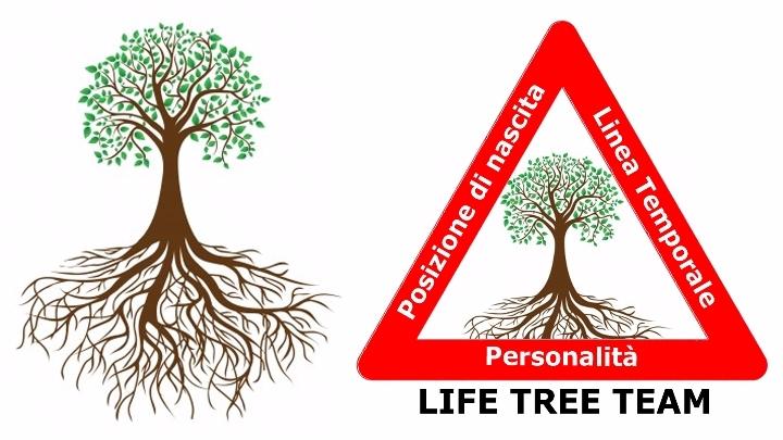 -------------------- LIFE TREE TEAM ---------