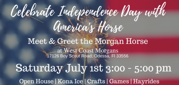 Celebrate Independence Early - With America's