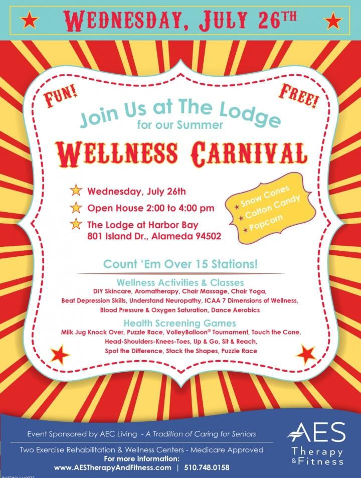Wellness Carnival for 55 & Older ~ Over 15 He