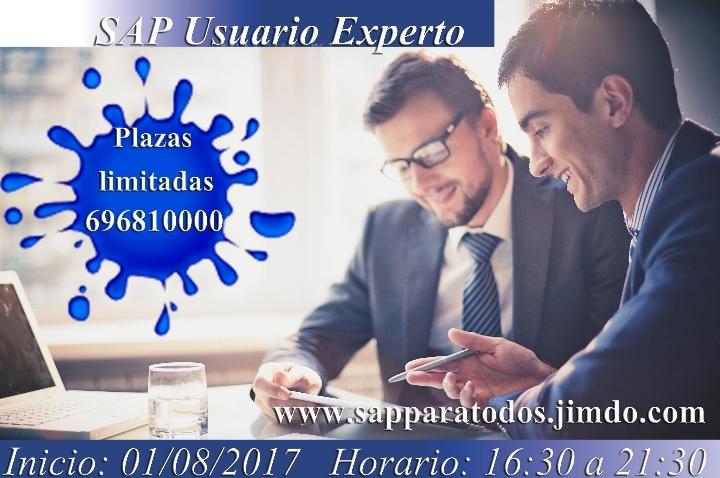 Curso SAP Usuario Experto