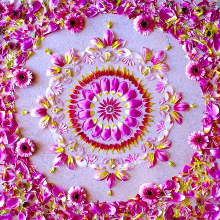 WORKSHOP DE MANDALAS com Natureza técnicas de flores