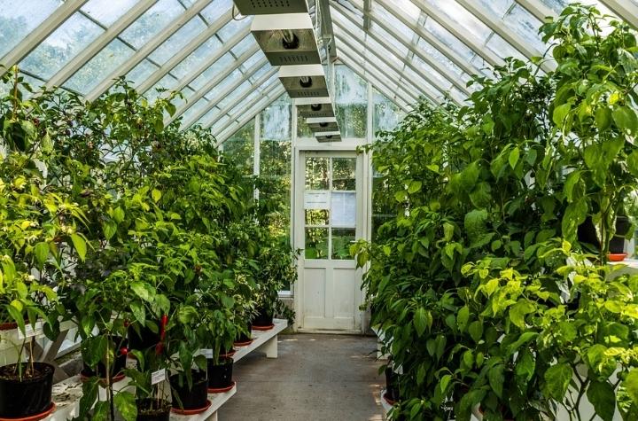 Find dit nye drivhus på drivhus udstilling i