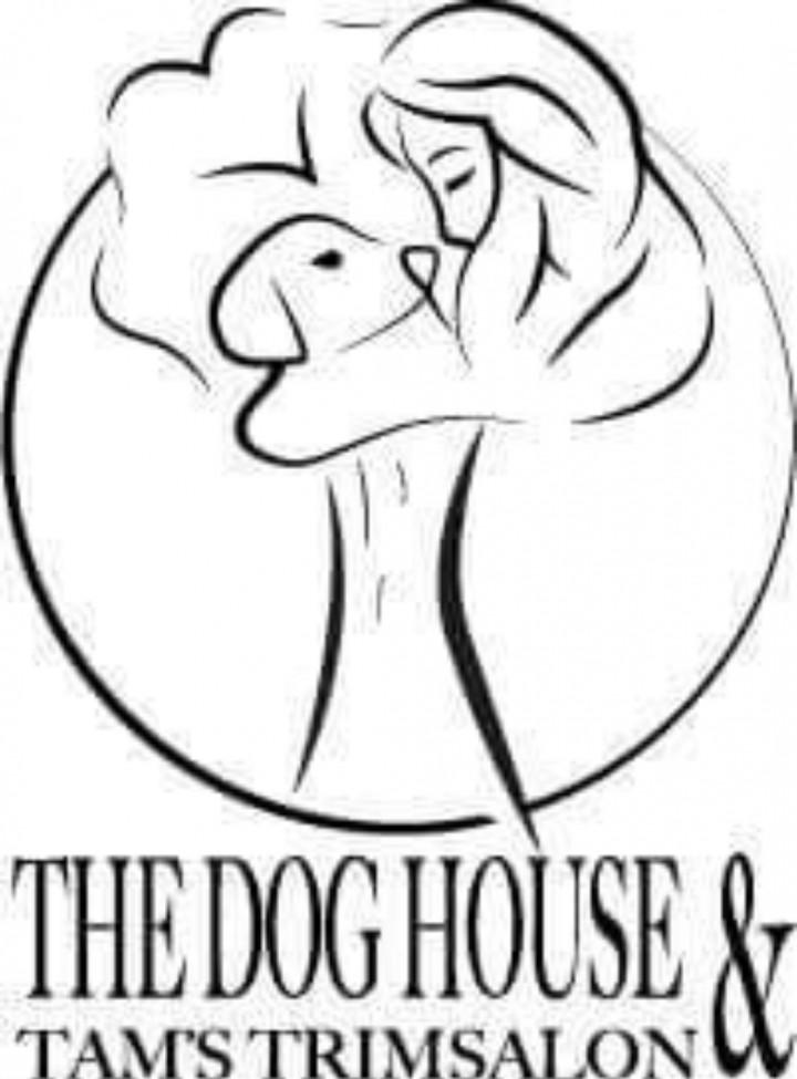 Workshop: leer de Intuïtie van uw hond gebruiken om hem/haar gezond te houden