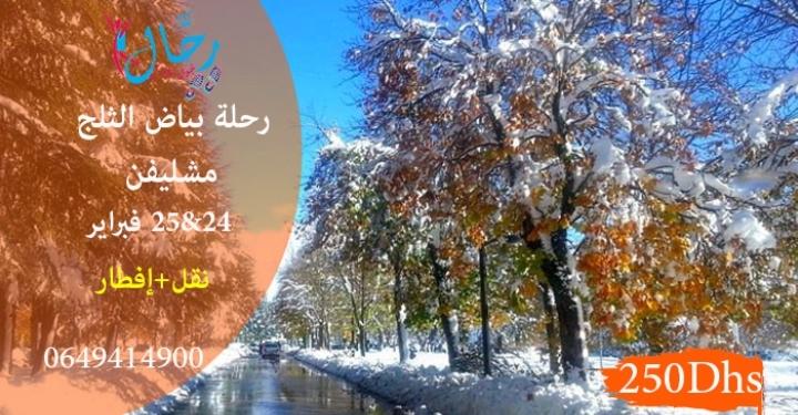 رحلة بياض الثلج لمشليفن