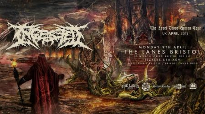 Ingested + Support