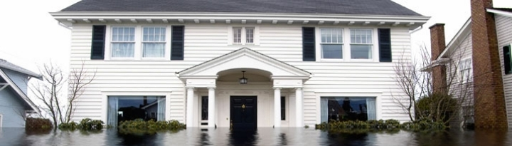 Hiring a Contractor for Water Mitigation and
