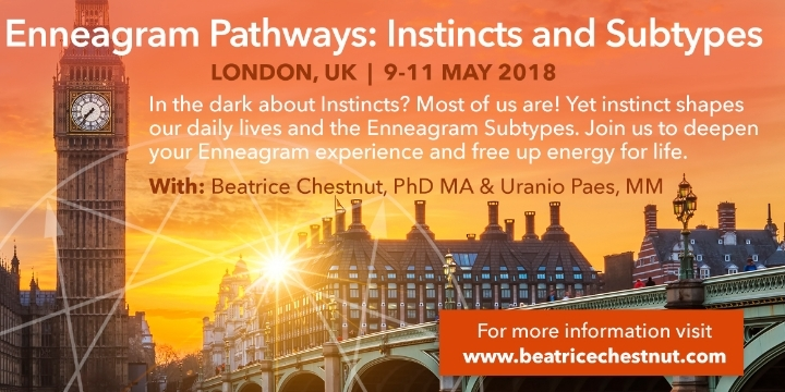 Enneagram Pathways - Instincts and Subtypes w