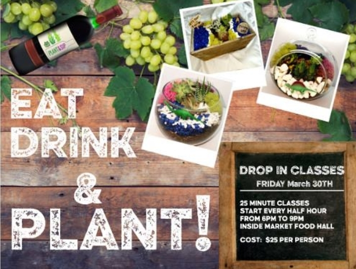 Drop In to Plant & Sip