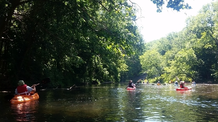 Open Paddle in Clinton