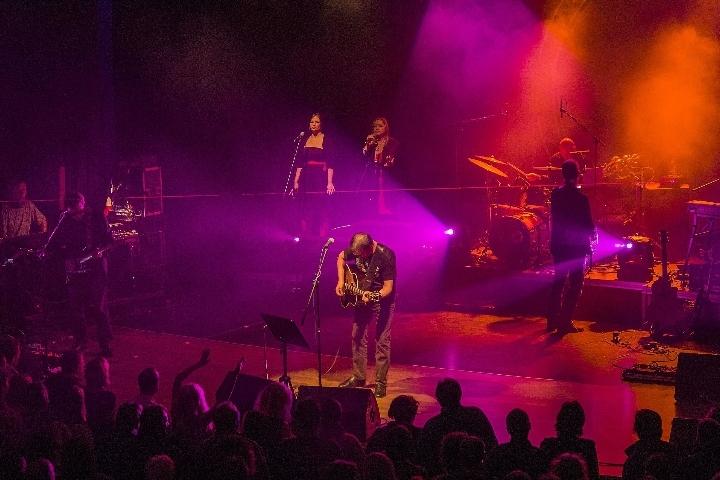 Floyd Council - Pink Floyd Show