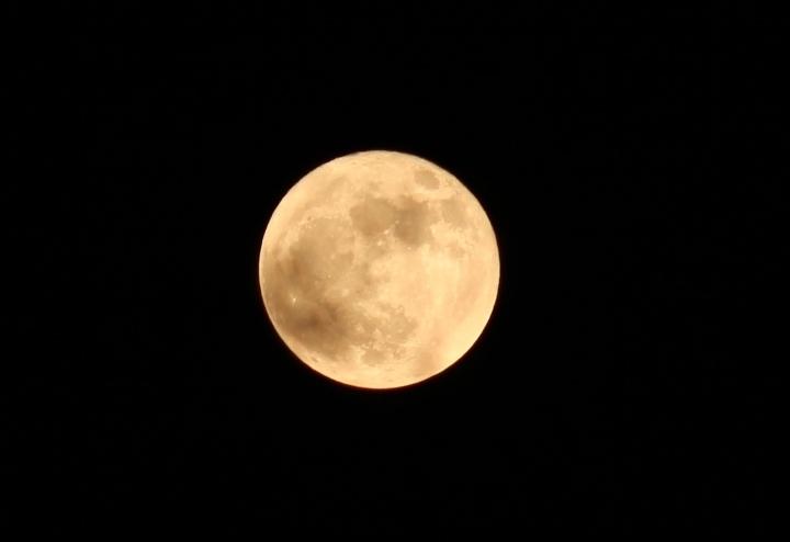 Full Moon Campfire and Night Hike at Raritan Headwaters