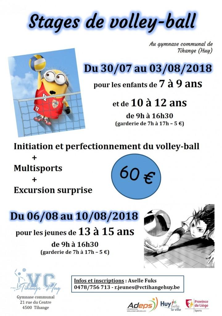 Stage d'été de volley ball