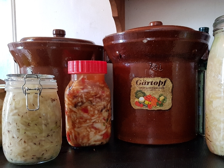 Fermentation/Probiotic Workshop