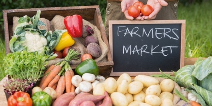 Farmers Market At Ted Lare Garden Center