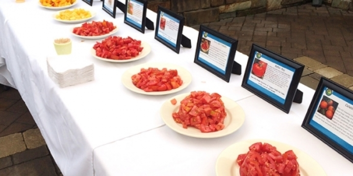 Delicieux Tomato Festival At Ted Lare Garden Center