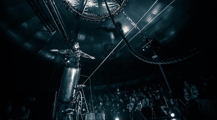 David Dimitri - L'homme cirque