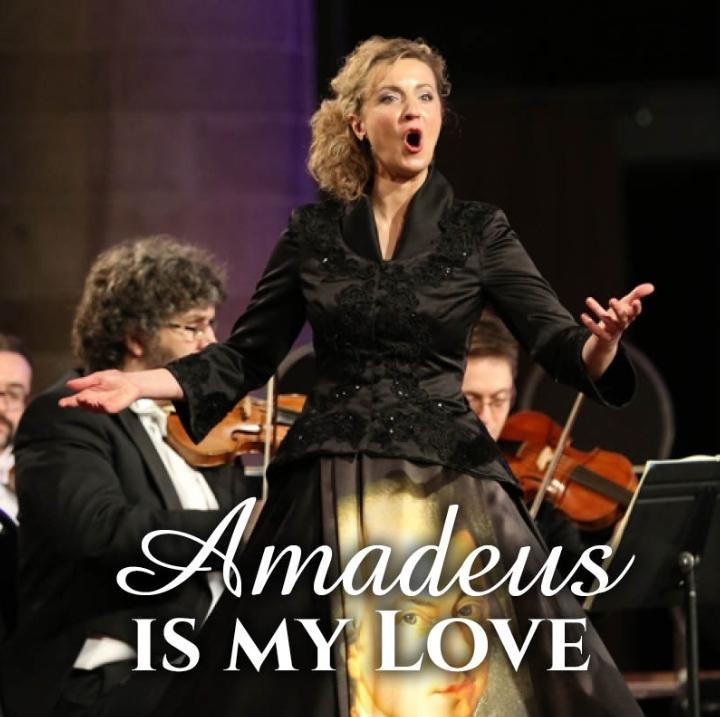 Amadeus is my Love