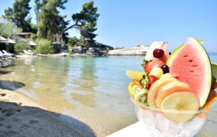 Σταφυλοθεραπεία: Τετραήμερο Retreat στη Χαλκιδική με τον Δρ Βασίλειο Τριτάκη και τη Χριστίνα Πολύζου | Healthy Life Holidays