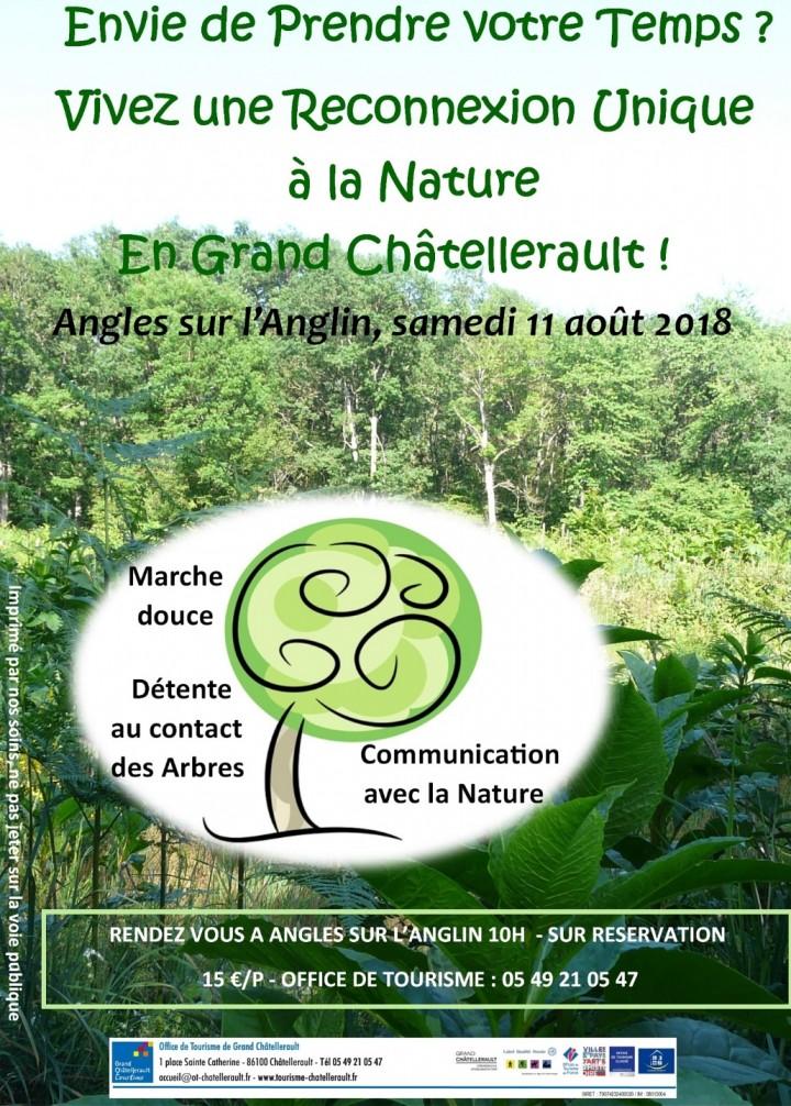 Reconnexion Unique à la Nature en Grand Châte