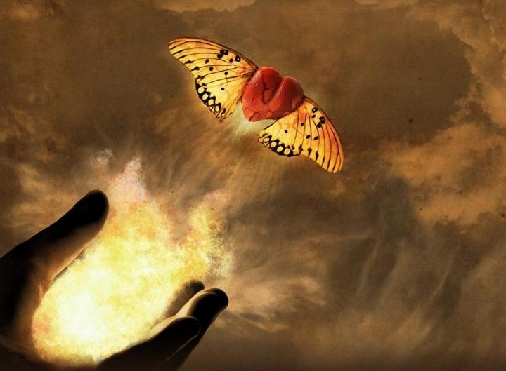 Criar seus Desejos com a Energia do Amor