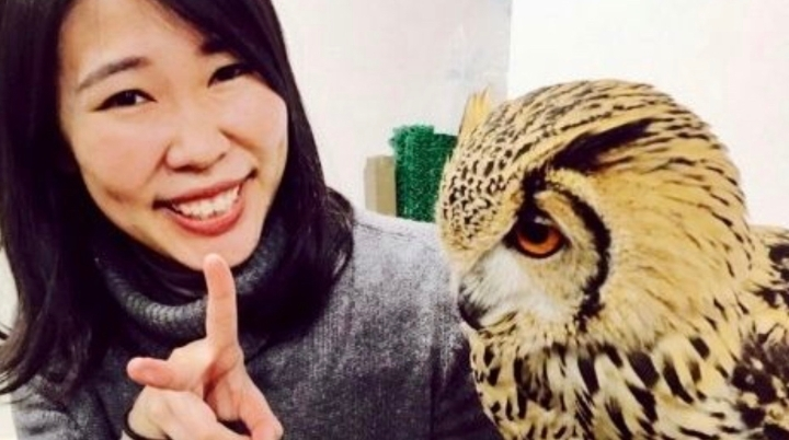 Owl cafe experience followed by friendly chat