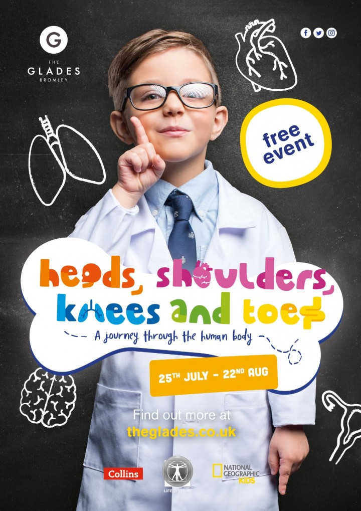 Heads, Shoulders, Knees and Toes: A Journey T