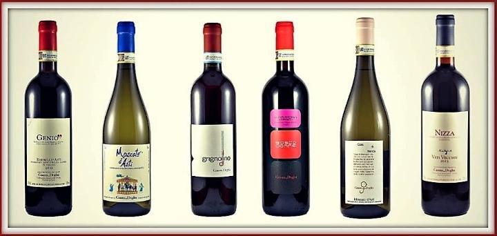 Degustazione di vini - Plus