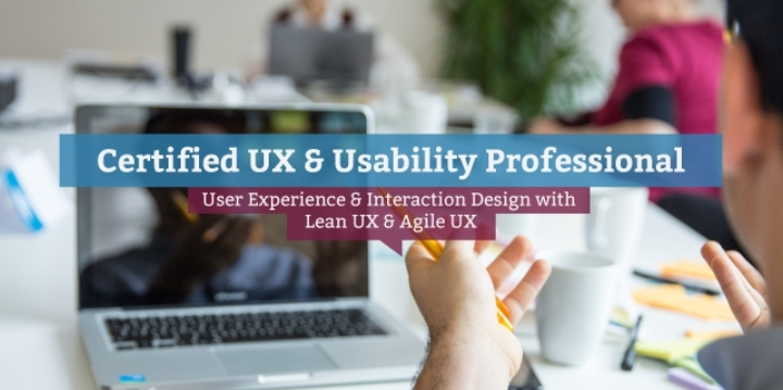 Certified UX & Usability Professional (engl.)