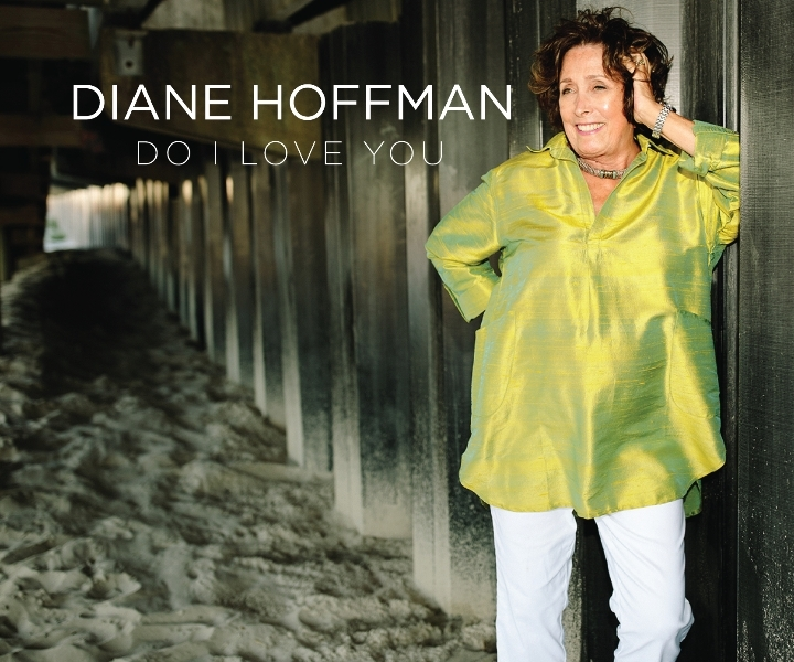 Diane Hoffman Record Release Concert For 'Do