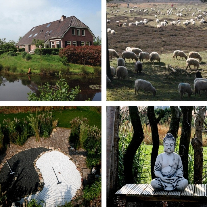 Yoga & Mindfulness Meditation Retreat in Dren