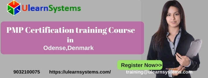 PMP Certification Training Course in Odense,D
