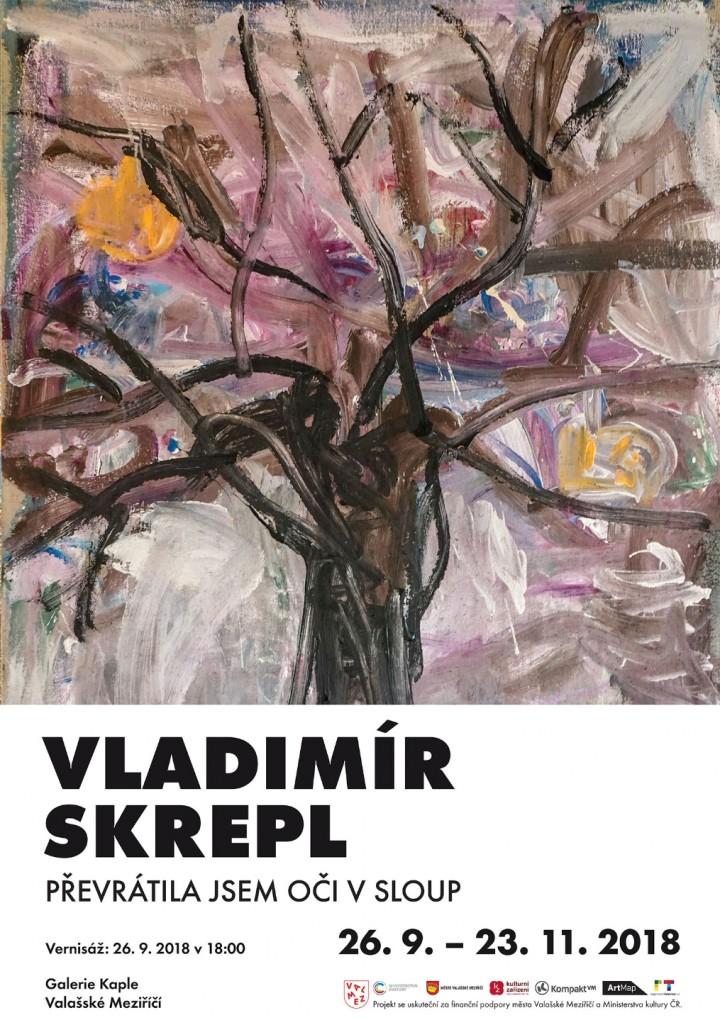 Převrátila jsem oči sloup – výstava Vladimíra