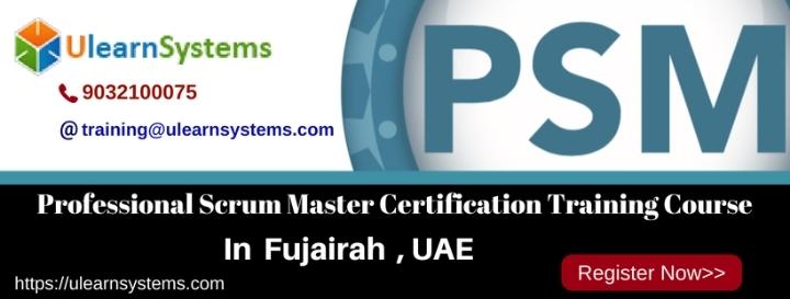 Professional Scrum Master™(PSM) Certification