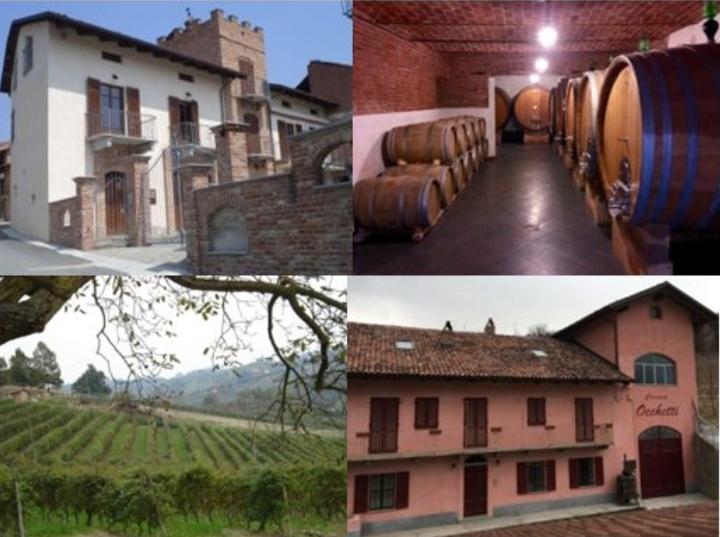 PODERI MORETTI offenes Weingut für Besuche und Weinproben, wein von Alba, Langhe und Roero - Piemont