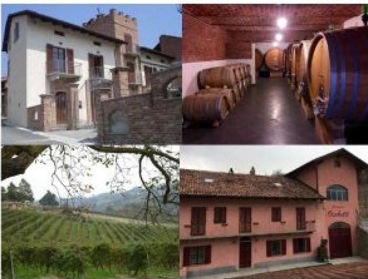 PODERI MORETTI cantina aperta per visita guidata e degustazione pregiati vini di Alba Langhe e Roero dicembre 2018
