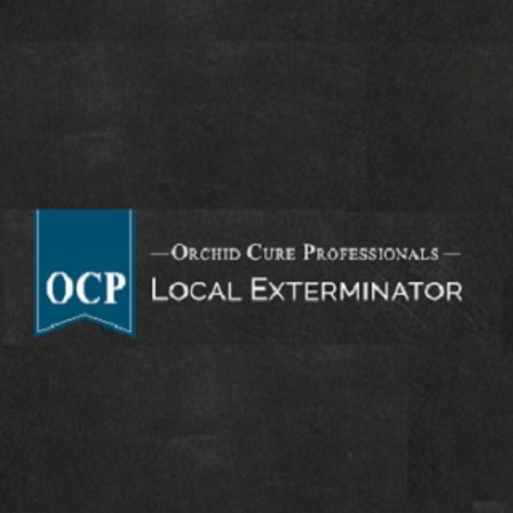 Ocp Bed Bug Exterminator Nyc Bed Bug Removal New York City 31