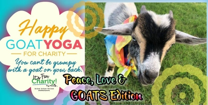 Happy Goat Yoga For Charity Peace Love Goats Edition 26 Jan 2019