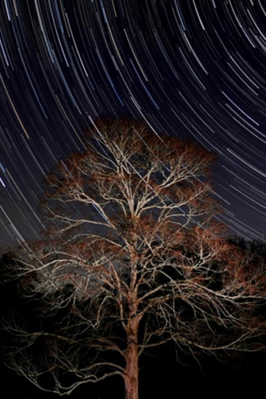 February Astronomy