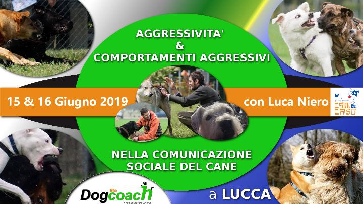 Aggressività e comportamenti aggressivi nella comunicazione sociale del cane