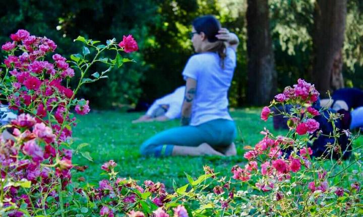 Sulle Ali del Respiro - Hatha Yoga nel verde